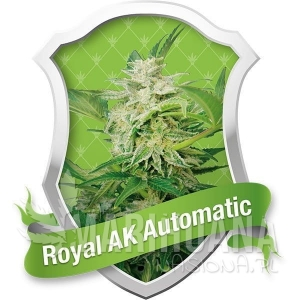 Royal AK Automatic® 1+1 - ROYAL QUEEN SEEDS
