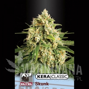 Skunk - KERA SEEDS
