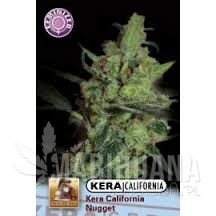 California Nugget - KERA SEEDS