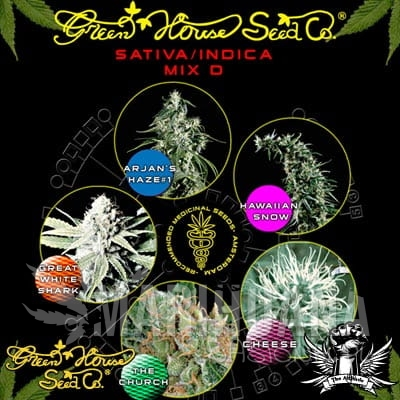GREEN HOUSE SEEDS - Sativa/Indica Mix D
