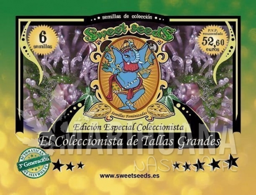 SWEET SEEDS - Autoflowering Collector Tallas Grandes Edition