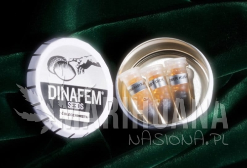 DINAFEM - Collectors Pack Nº 2